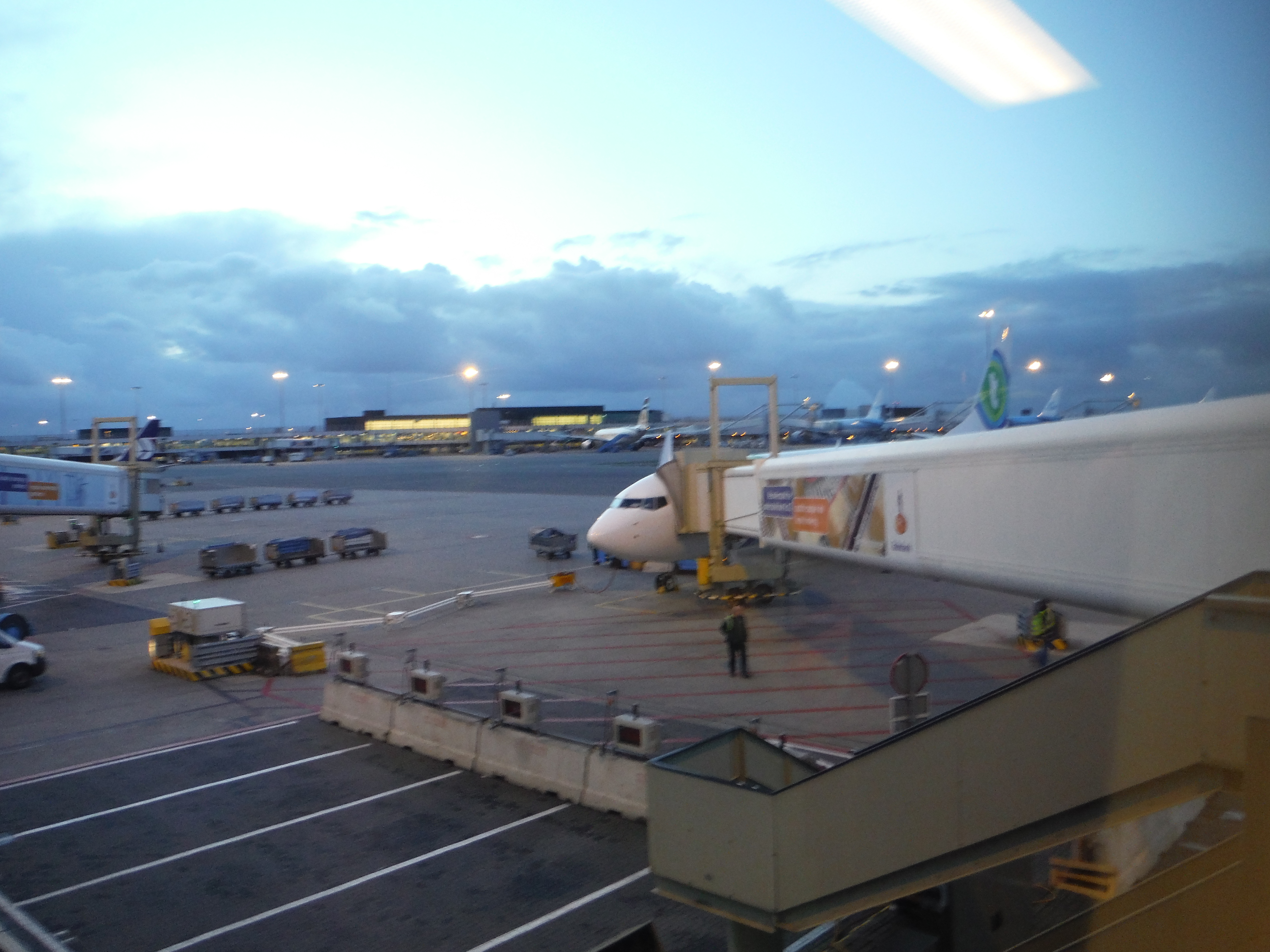 Trasavia plane at jetway