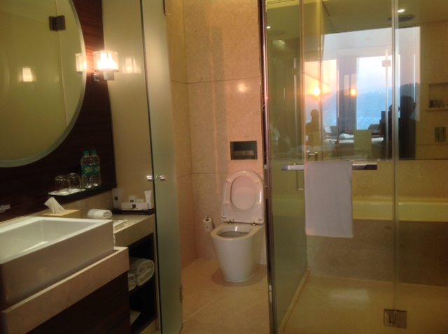 bathroom, jw marriott pune
